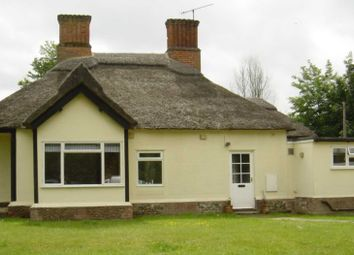 Thumbnail 4 bedroom detached house to rent in Herringswell, Bury St. Edmunds