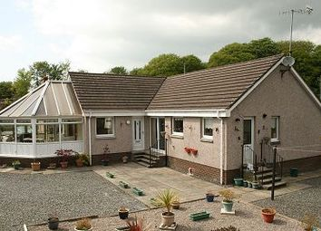 Thumbnail 3 bed bungalow for sale in Parkview, The Hollow, Creetown