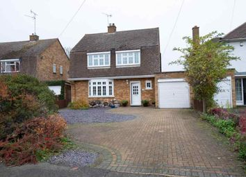 Thumbnail 4 bed detached house to rent in Grafton Avenue, Peterborough