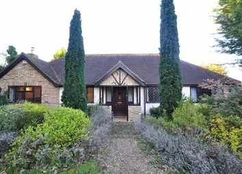 Thumbnail 3 bed bungalow to rent in Church Road, Cookham, Maidenhead