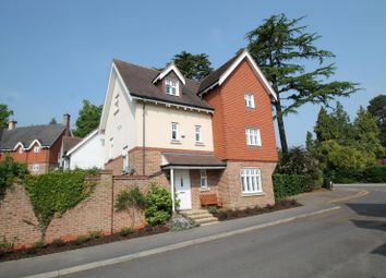 Thumbnail 4 bedroom detached house to rent in St. Pauls On The Green, Haywards Heath