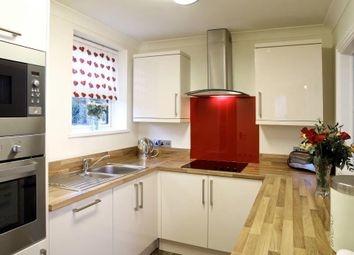 Thumbnail 2 bed flat to rent in Torbay Road, Torquay