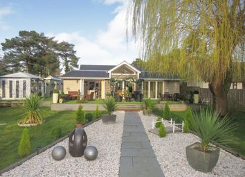 Thumbnail 4 bedroom detached bungalow for sale in Braeside Road, St. Leonards, Ringwood