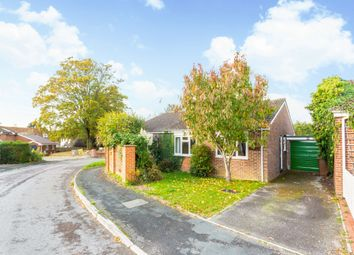 Thumbnail 4 bed bungalow to rent in Grange Close, Fyfield, Andover