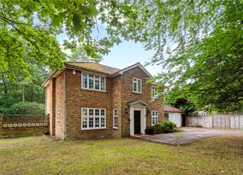 Thumbnail 4 bed detached house for sale in Pinecote Drive, Sunningdale, Ascot, Berkshire