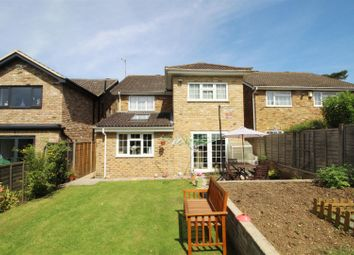 Thumbnail 4 bed detached house to rent in Coldharbour Lane, Bushey