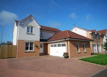 Thumbnail 4 bed detached house to rent in Doonvale Drive, Ayr