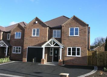Thumbnail 4 bed detached house for sale in Guys Lane, Dudley