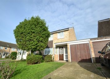 Thumbnail 5 bedroom semi-detached house to rent in Howe Close, Colchester, Essex
