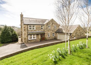 Thumbnail 4 bed detached house for sale in Revelstone, The Dene, Allendale, Hexham, Northumberland