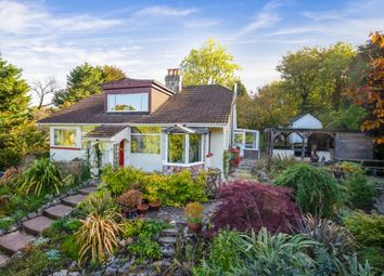 Thumbnail 4 bed detached bungalow for sale in Rectory Road, Ogwell, Newton Abbot