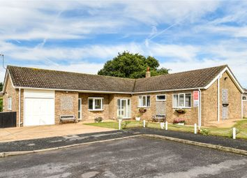 Thumbnail 4 bed bungalow for sale in Exmoor Close, North Hykeham