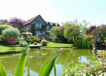 Thumbnail 4 bed detached house for sale in Dulverton