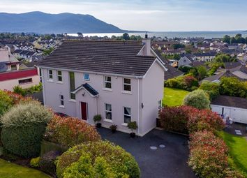 Thumbnail Detached house for sale in Pinewood Hill, Warrenpoint, Newry