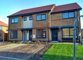 Thumbnail 2 bed terraced house to rent in Mulberry Lane, Hull