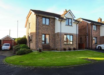 Thumbnail 4 bed detached house for sale in Glendarragh, Knocknagoney, Belfast