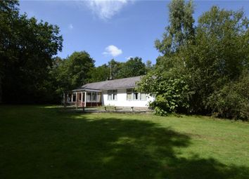 Thumbnail 3 bed bungalow for sale in Hollybush Ride, Finchampstead, Wokingham