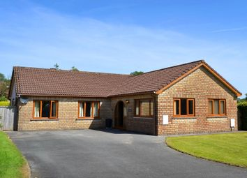 Thumbnail 4 bed detached bungalow for sale in 11 Springfield Park, Narberth
