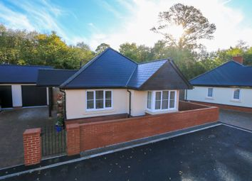 Thumbnail 3 bed detached bungalow for sale in Finistere Avenue, Dawlish