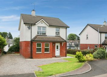 Thumbnail 3 bed detached house for sale in Dicksons Hill, Ballymena, County Antrim