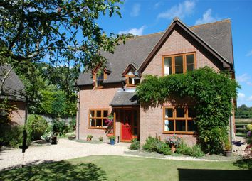 Thumbnail 4 bed detached house for sale in East Lane, Everton, Lymington, Hampshire