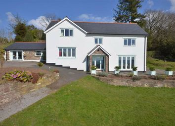 Thumbnail 5 bed detached house to rent in Llanishen, Chepstow, Monmouthshire