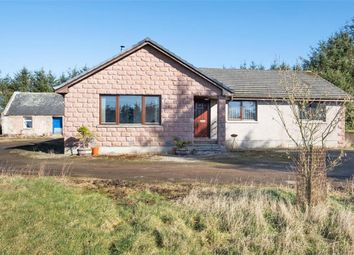 Thumbnail 4 bedroom detached house for sale in New Byth, Turriff, Aberdeenshire