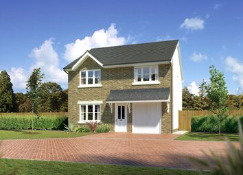 "Thumbnail 4 bedroom detached house for sale in ""Denewood"" at Hunter Street, Auchterarder"