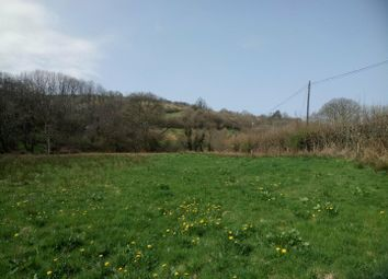 Land for sale in Llanwrda SA19