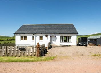 Thumbnail 3 bedroom bungalow for sale in Ryshott, Southend, Campbeltown, Argyll And Bute