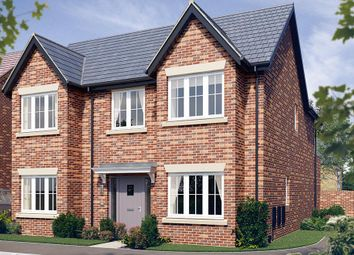 "Thumbnail 4 bedroom detached house for sale in ""The Tetbury"" at Malt Mill Close, Kilsby, Rugby"