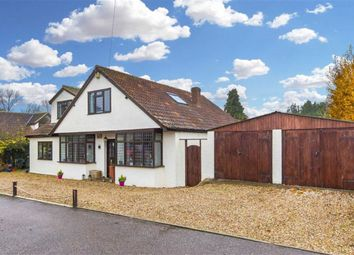 Thumbnail 4 bed detached house for sale in Willow Place, Hastingwood, Essex