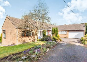 Thumbnail 4 bed bungalow for sale in Down Road, Portishead, Bristol