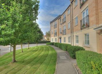 Thumbnail 2 bedroom flat for sale in Holly Blue Road, Wymondham