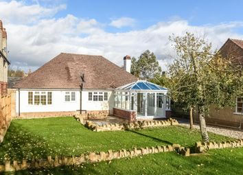 Thumbnail 3 bedroom detached bungalow for sale in South Street, Crewkerne, Somerset