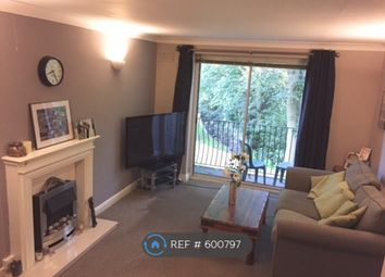 Thumbnail 2 bed flat to rent in Nether Green, Sheffield