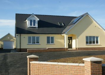 Thumbnail 4 bed detached bungalow for sale in Beulah, Ceredigion