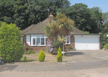 Thumbnail 4 bed detached bungalow for sale in Daresbury Close, Bexhill On Sea, East Sussex