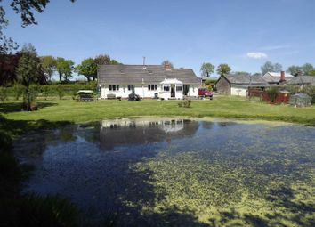 Thumbnail 3 bed farm for sale in Rackenford, Tiverton