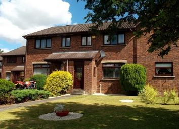 Thumbnail 3 bedroom end terrace house to rent in Bryce Gardens, Larkhall
