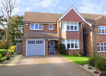 Thumbnail 4 bedroom detached house for sale in Chapel Rise, Rubery