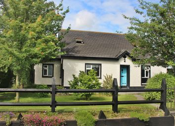 Thumbnail 4 bed bungalow for sale in Ross Cottage, Cappincur, Tullamore, Offaly