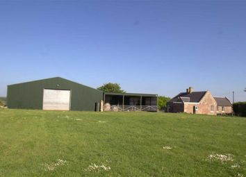 Thumbnail 4 bed detached house for sale in Chirnside, Duns, Berwickshire