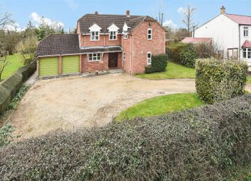Thumbnail 5 bed detached house for sale in Holywell, St. Ives, Huntingdon