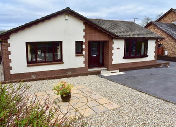 Thumbnail 4 bed detached bungalow for sale in Heol Ddu, Ammanford