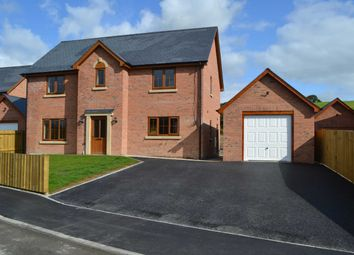 Thumbnail 4 bed detached house for sale in Plas Trannon, Trefeglwys, Caersws, Powys