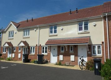 Thumbnail 2 bed terraced house to rent in Willow Way, Chard