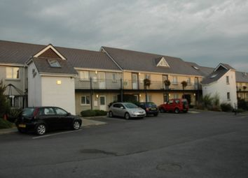 Thumbnail 2 bed flat to rent in Parc Hafan, Newcastle Emlyn, Carmarthenshire
