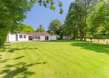 Thumbnail 4 bed detached house for sale in Fyfield, Andover, Hampshire