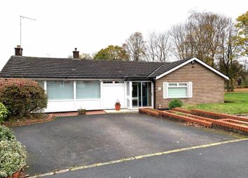 Thumbnail 3 bed detached bungalow to rent in Springvale Avenue, Walsall, West Midlands